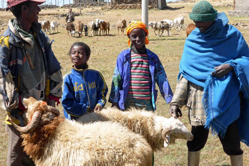 Äthiopien: zwei Hammel, umringt von Kindern und Männern